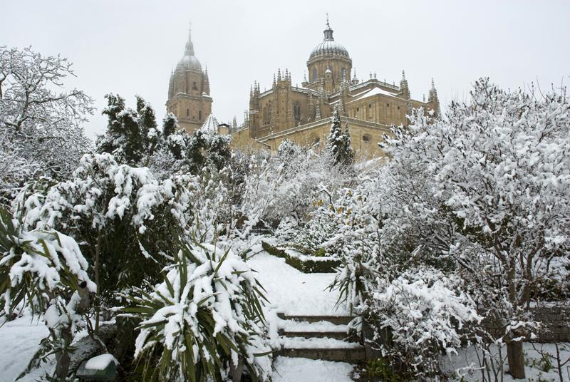 Huerto de Calisto y Melivea, Salamanca