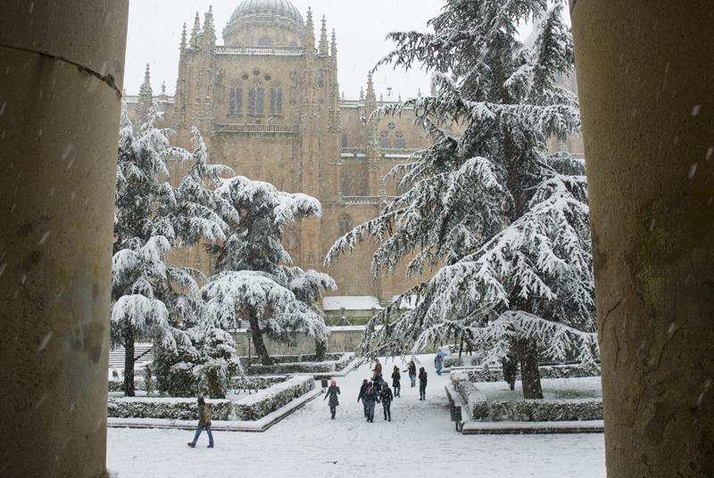 Plaza de Anaya. Catedral. Salamanca