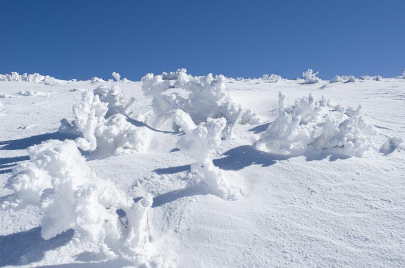 El paisaje invernal