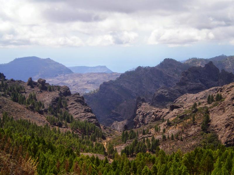 LAS HOYAS DEL NUBLO -  Caldera de Tejera - Gran Canaria
