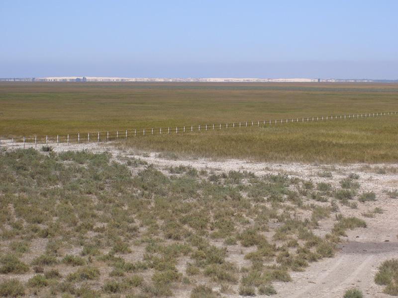 Caño del Travieso y dunas al fondo