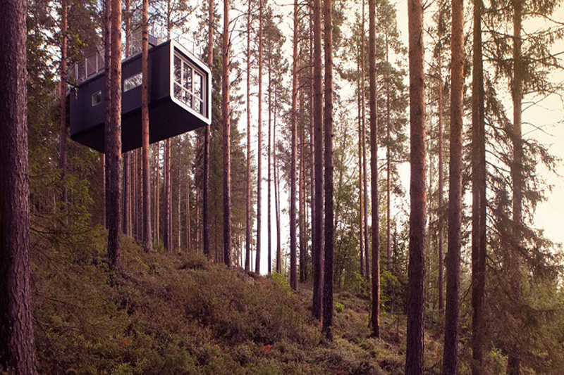 Treehotel_Suecia