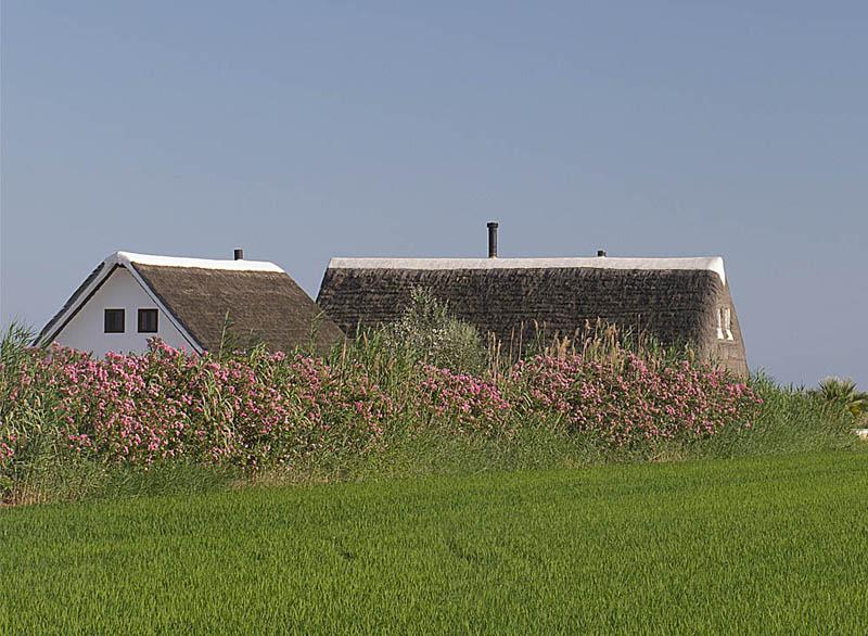 Construcción tradicional en Delta del Ebro, Tarragona