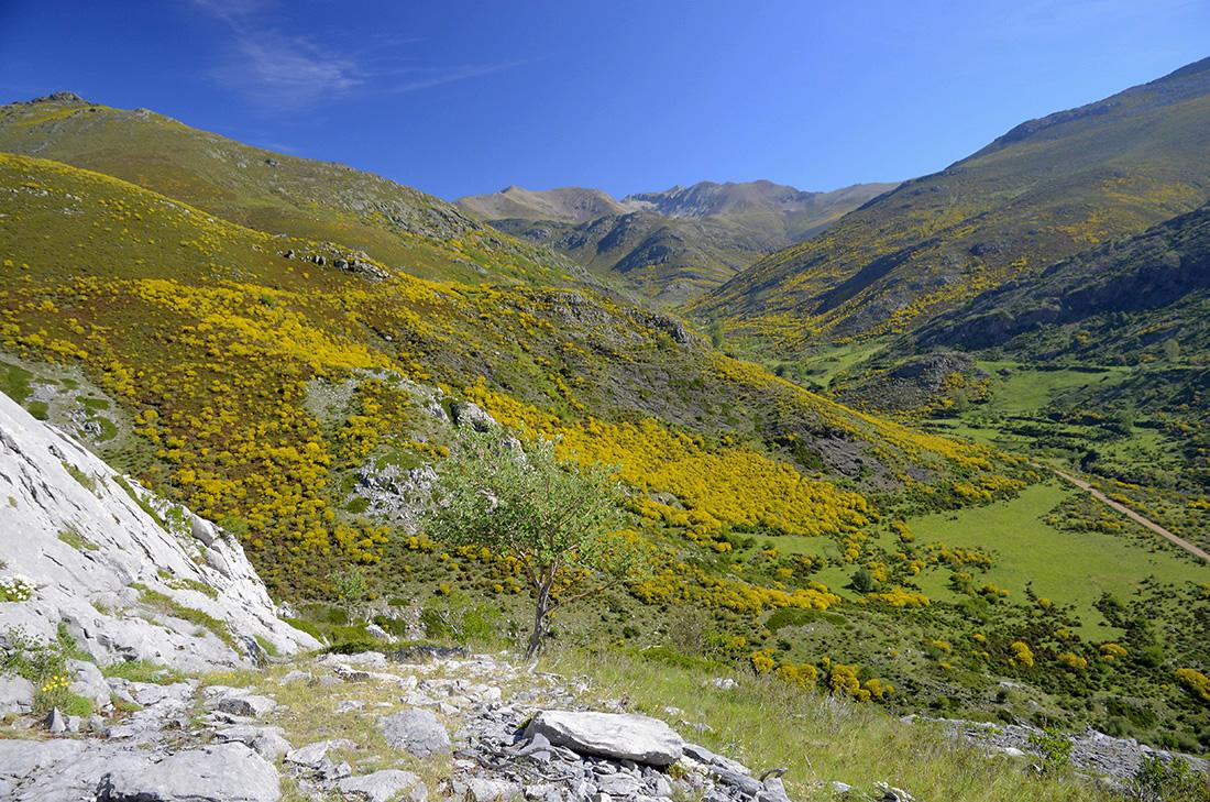 Valle del Mazobre, La Montaña Palentina
