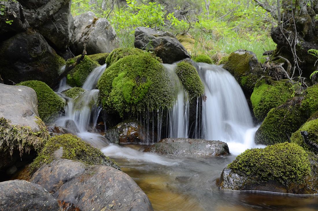 Arroyo Cabriles, Montaña Palentina