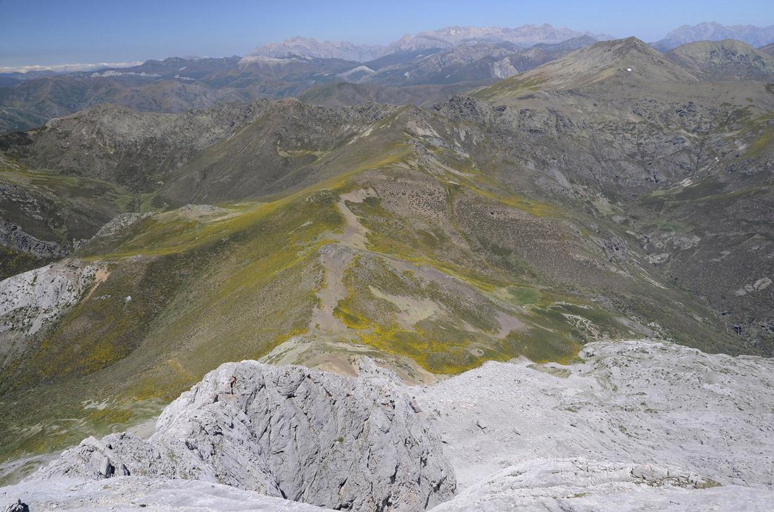 Picos de Europa al fondo, La Montaña Palentina