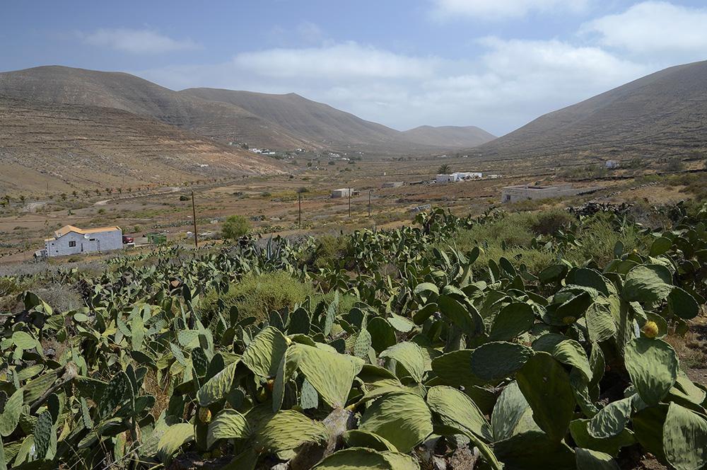 Vallebrón-Fuerteventura