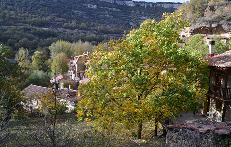 Valdelateja, Burgos