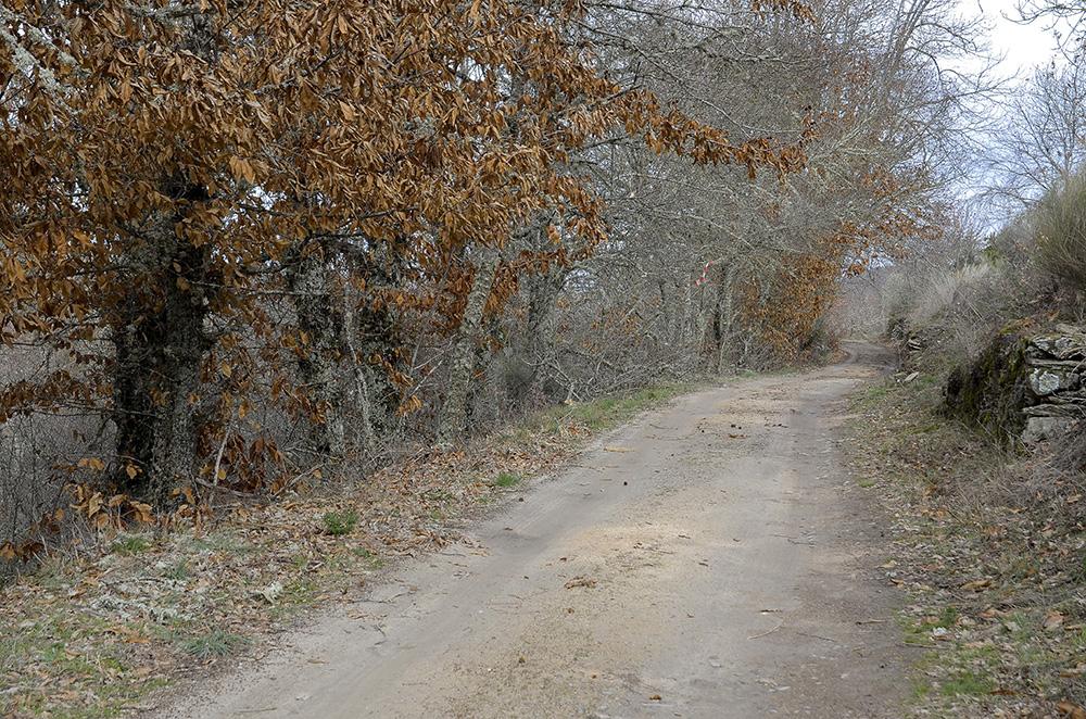 Camino de Masueco, Los Arribes del Duero, Salamanca