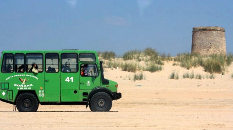 Visita al Parque Nacional de Doñana