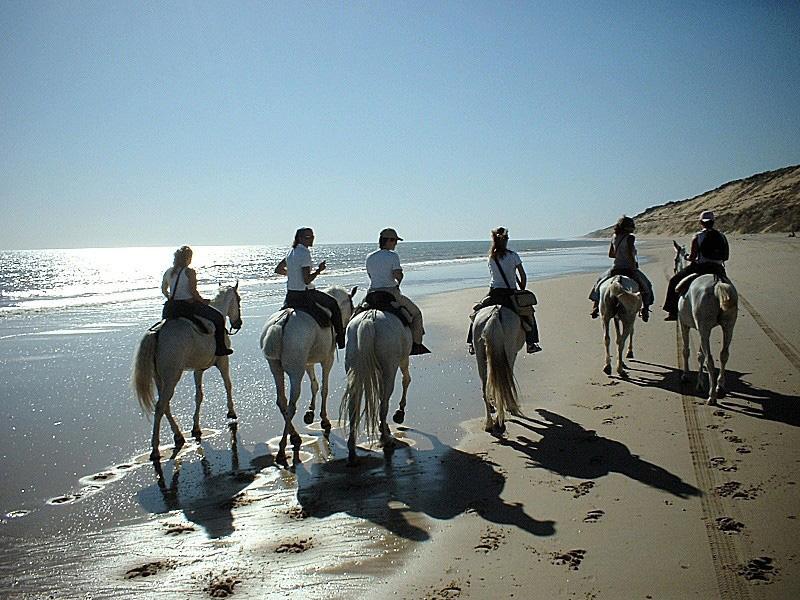 A Caballo por la playa del Asperillo-Matalascañas