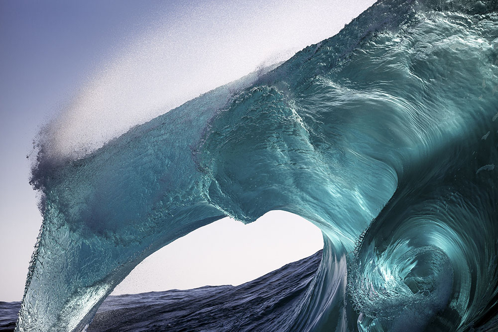 SEA HORSE - WARREN KEELAN (AUSTRALIA) - Ganador: Paisajes Naturales