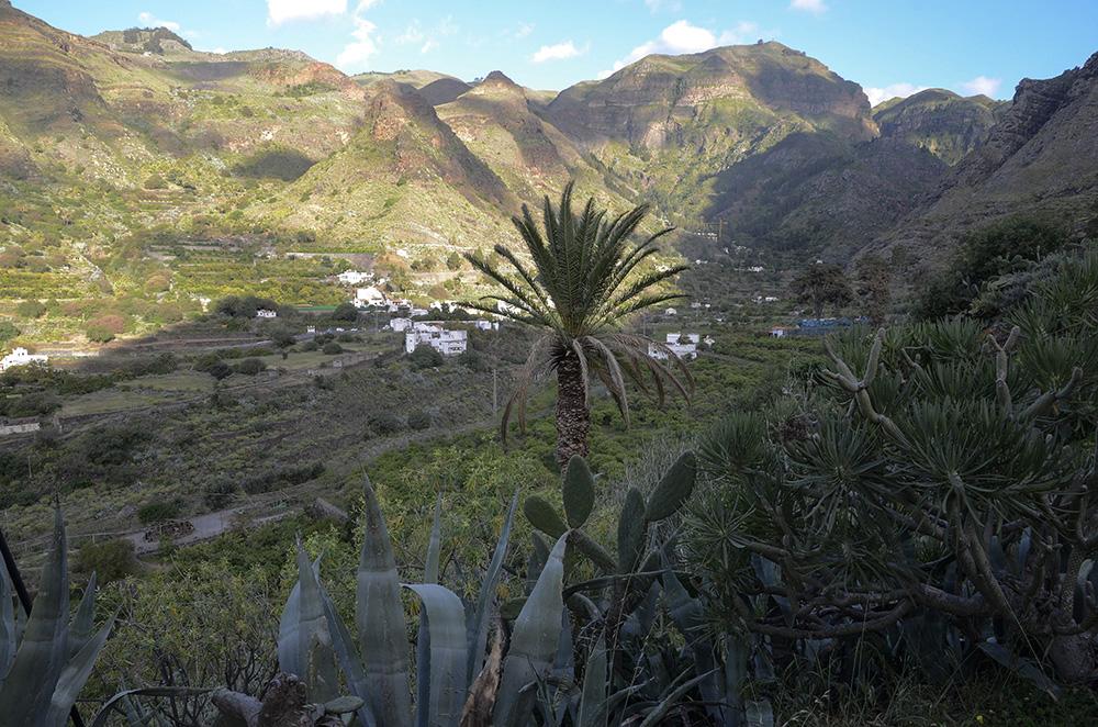 Barranco de Agaete