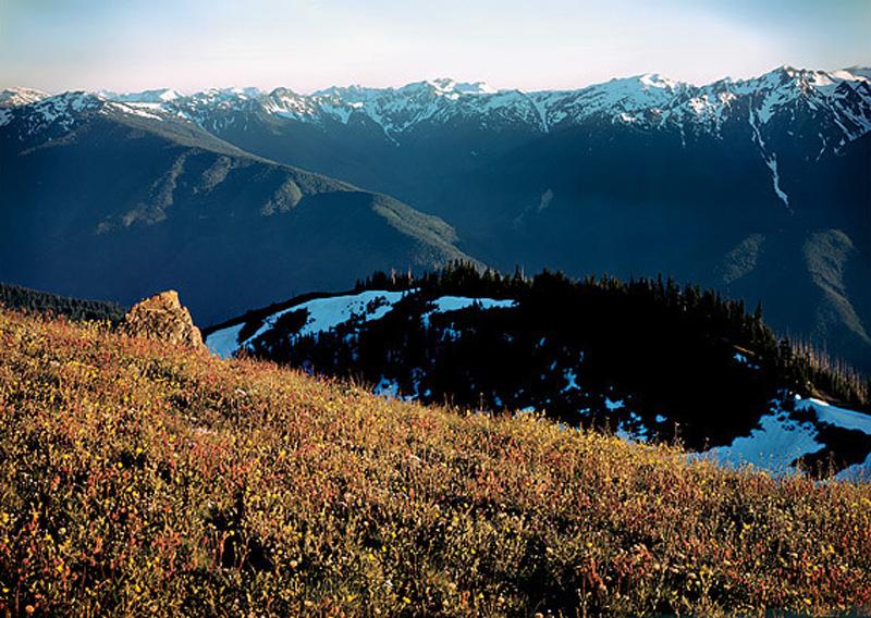 Parque Nacional Olympic