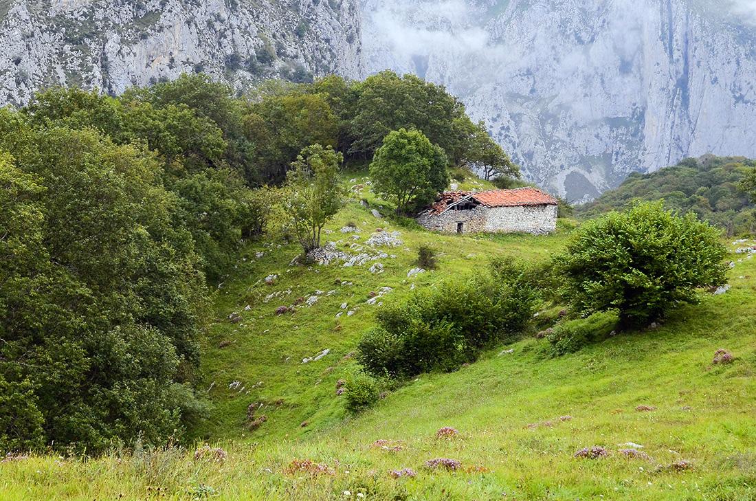 Sierra de Bejes-Cantabria