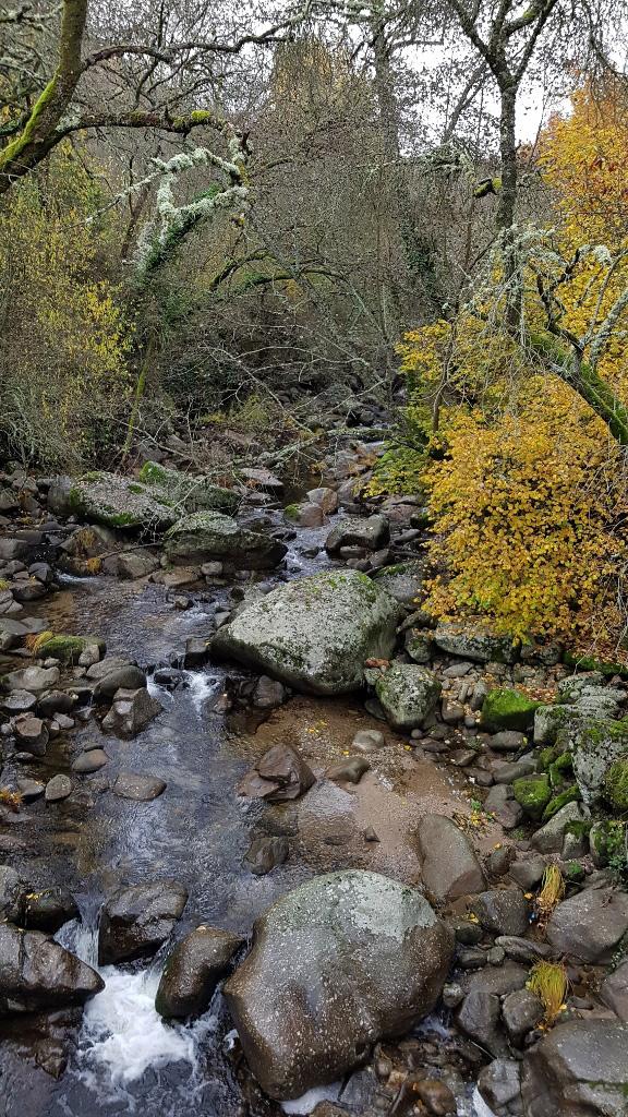 Sierra de Béjar-Salamanca