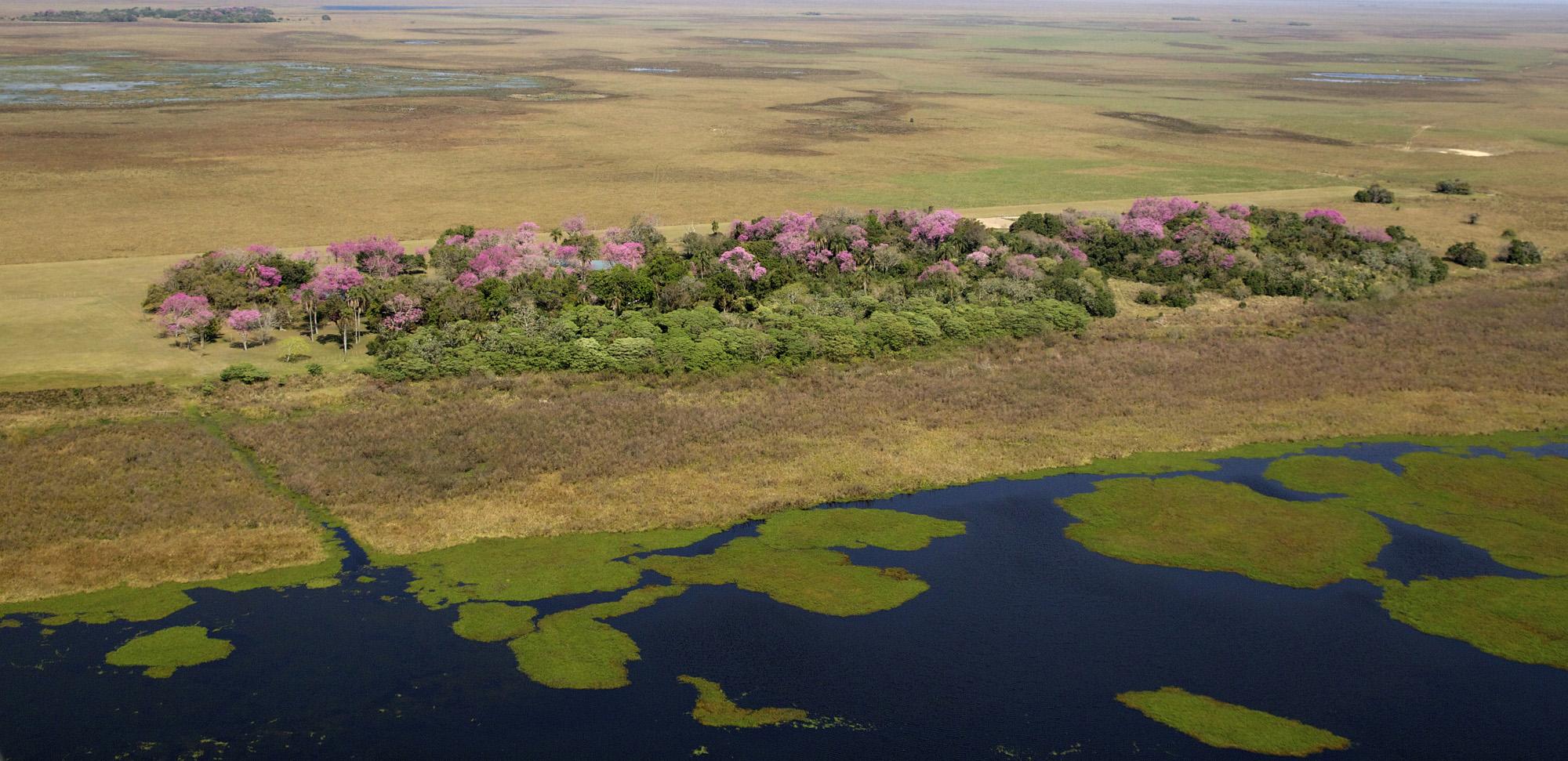 Parque Provincial Iberá-Argentina
