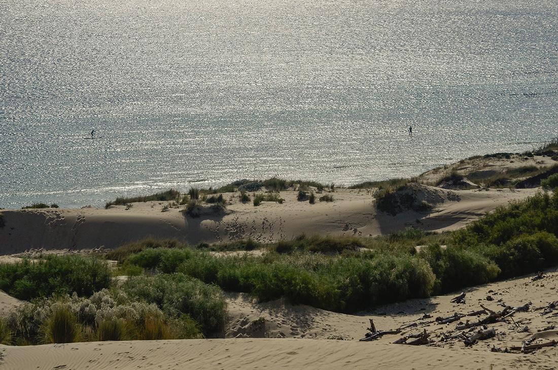 Duna de Valdevaqueros-Cádiz