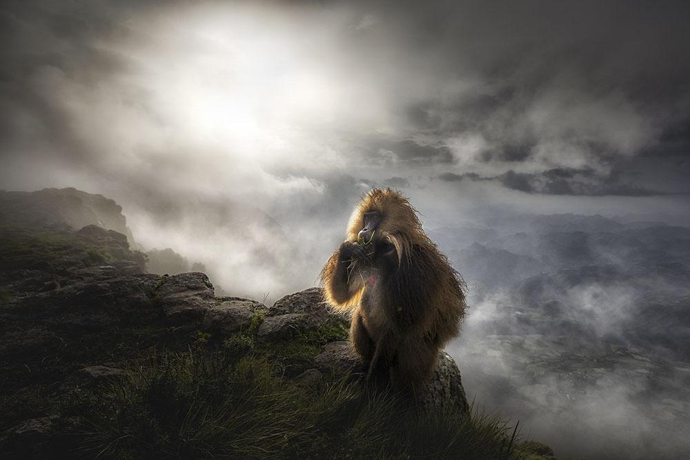 Concurso Internacional de fotografía de Montaña - Naturaleza y Aventura – Memorial María Luisa