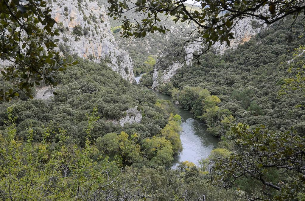 Meandro-Burgos