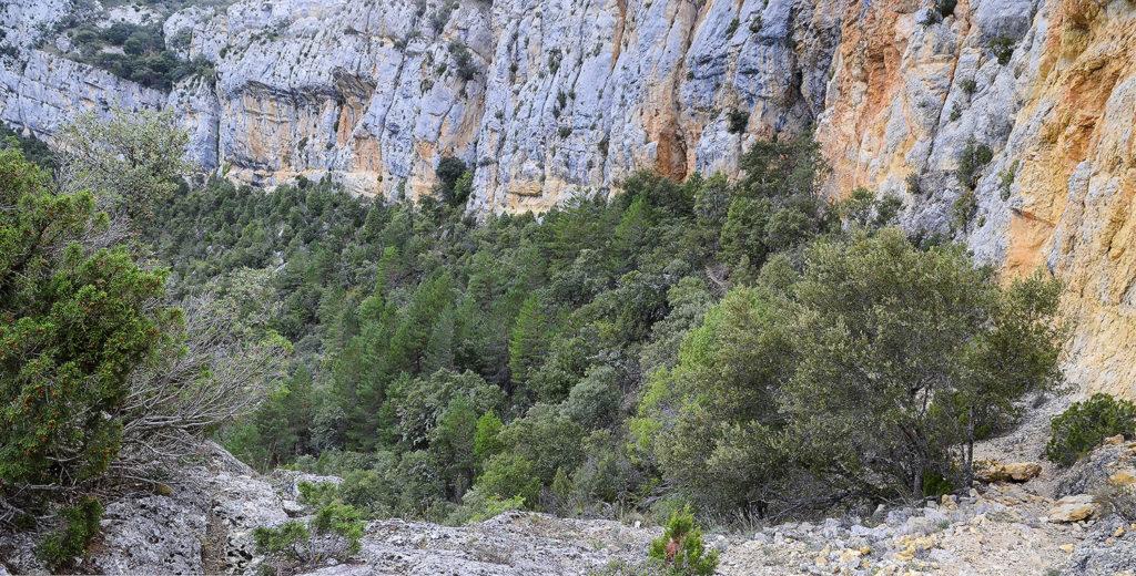 Paredes-de-roca-1-Burgos