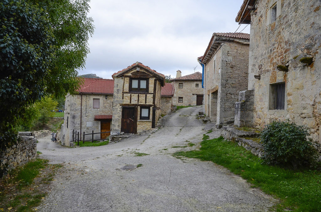 Vallejo-Burgos
