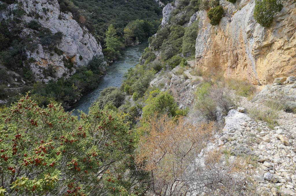 Los-Tornos-Burgos