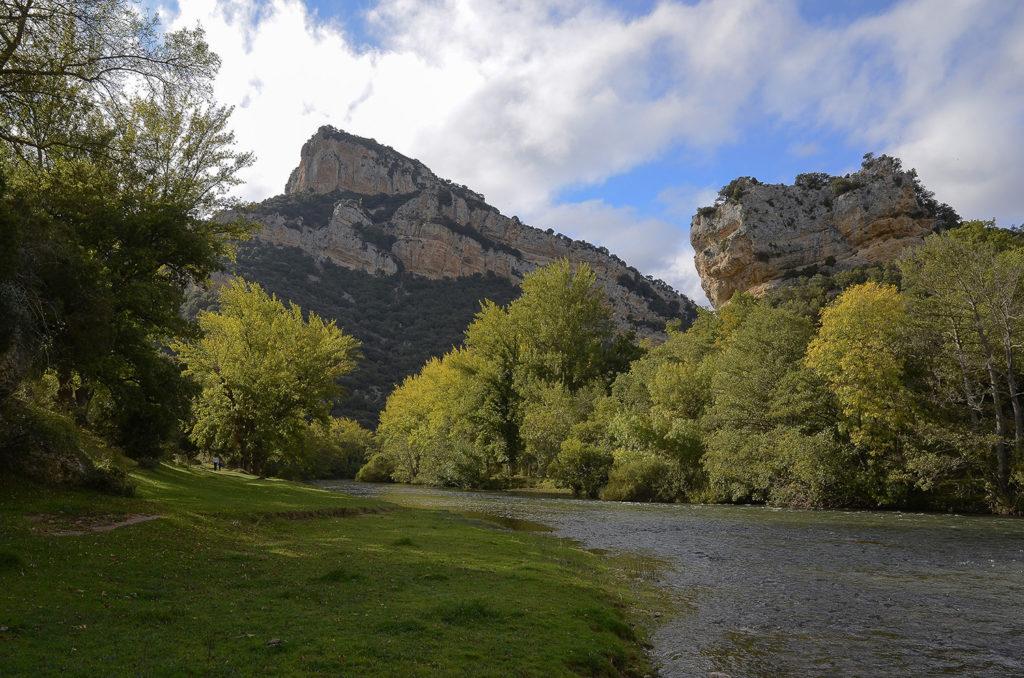 Bosque-de-ribera-Burgos
