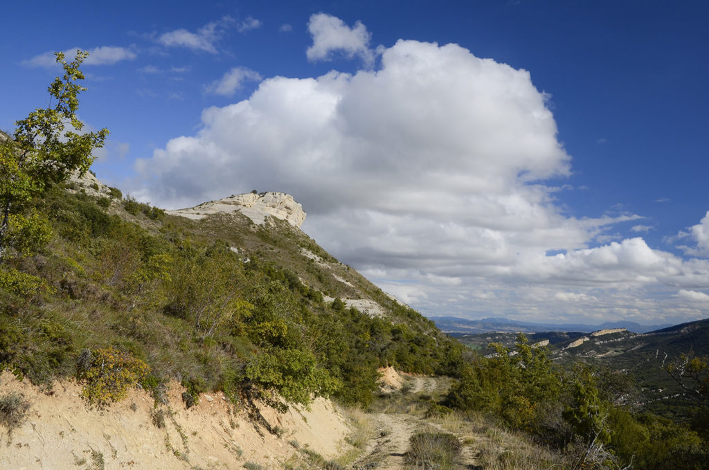 Camino de Quintanilla-Burgos