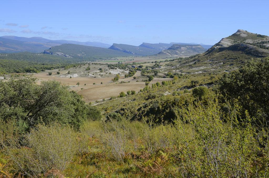 Llanos de Villamartín-Burgos