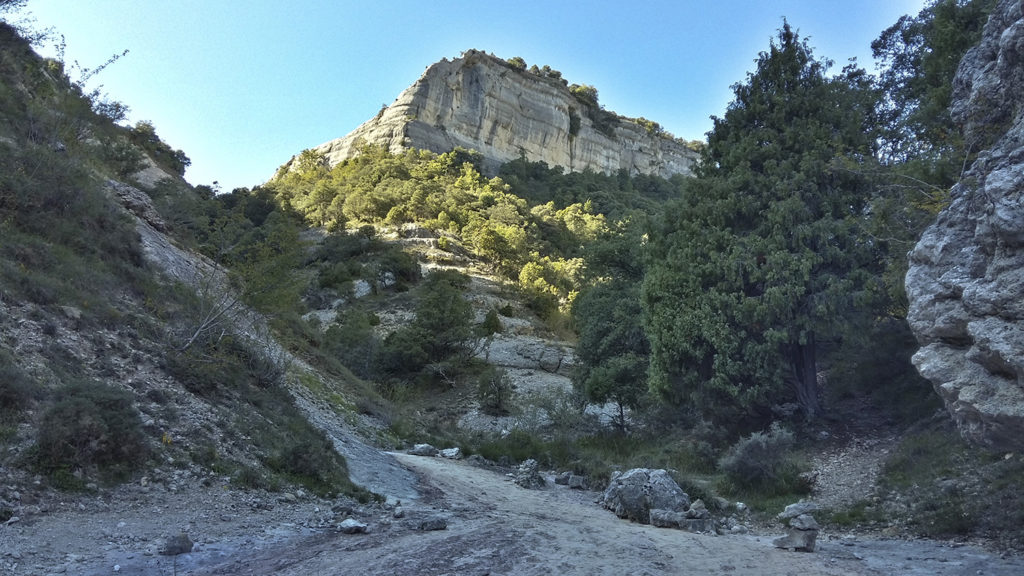 Canales del Dulla y Valdecastro-Burgos
