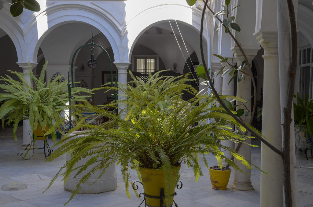 Patio-Sanlúcar de Barrameda-Cádiz