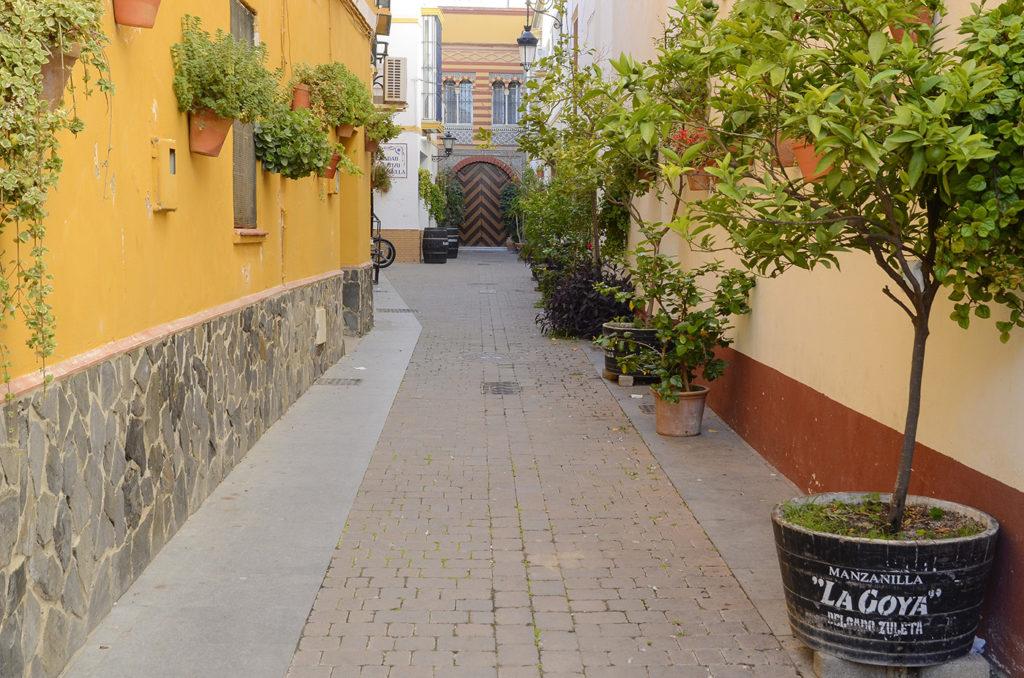 Callejón-Sanlúcar de Barrameda-Cádiz