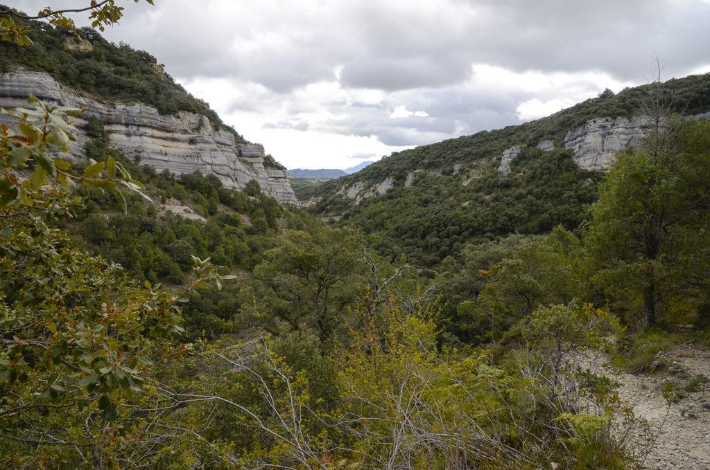 Canal del Dulla-Canal del Dulla-Burgos