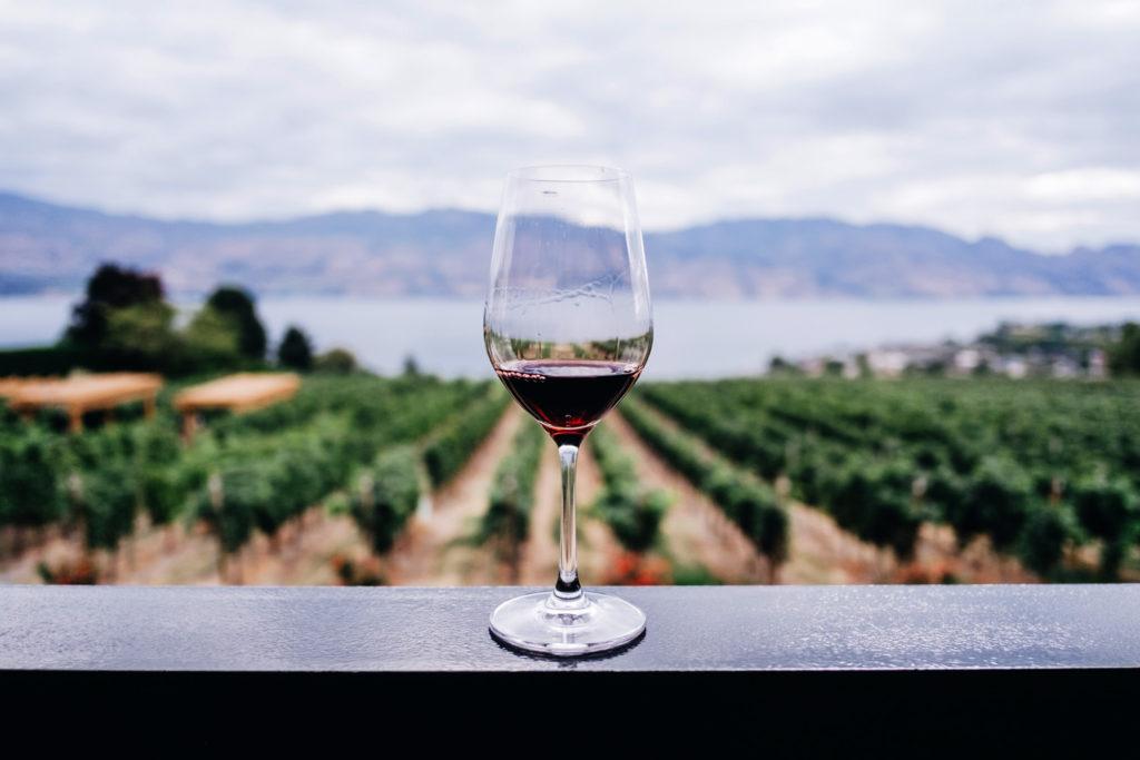 Kym-ellis-Vinos-de-Rioja-ESPAÑA