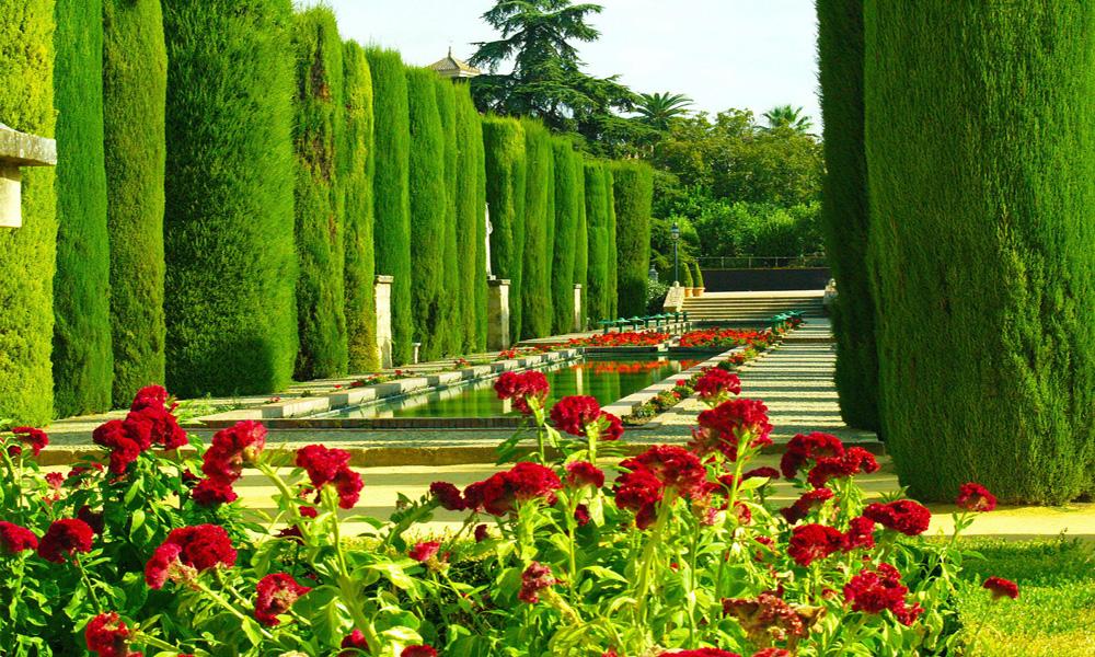 Córdoba-Andalucía