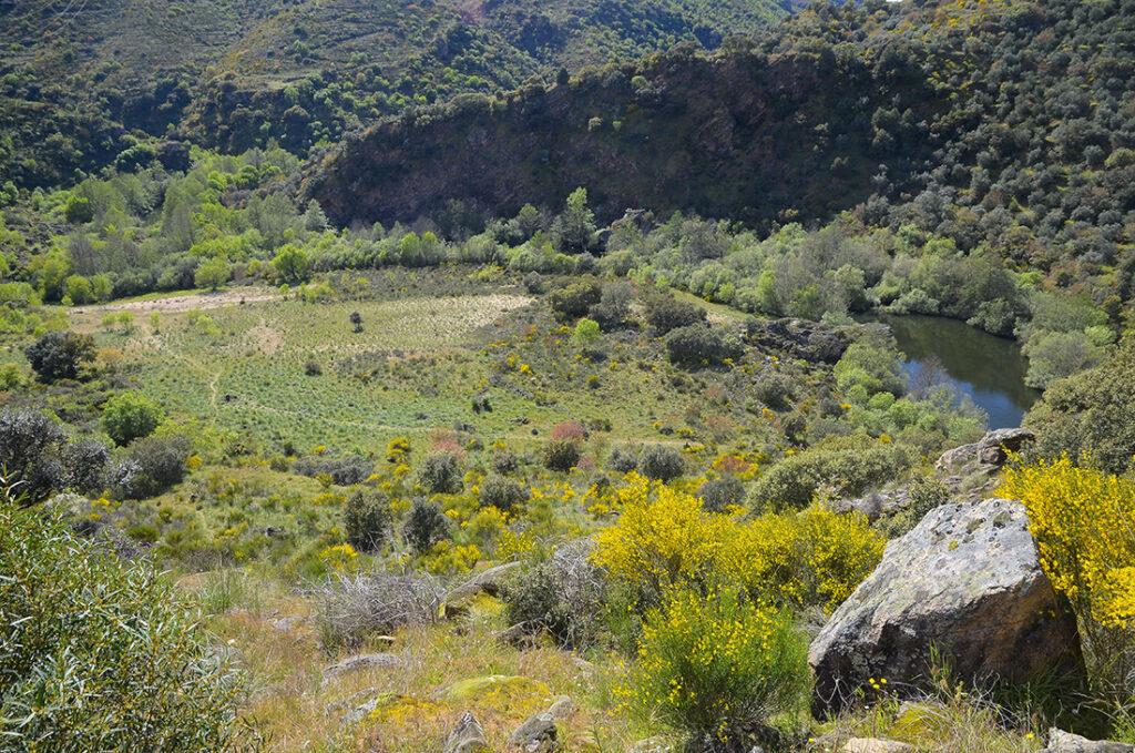 Arenal del Encuentro-Arribes del Duero-Salamanca