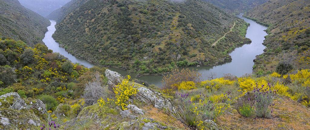 Cañón del Duero-Arribes del Duero-Salamanca