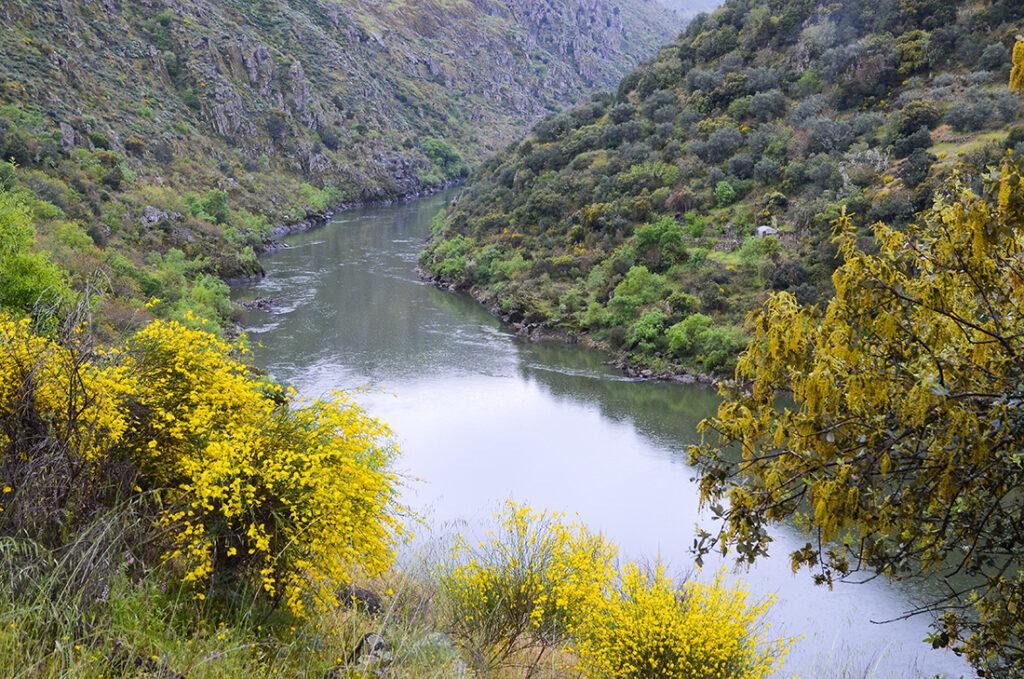 Cañón del Duero-Salamanca